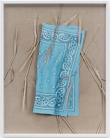 Annette Kelm, Paisley and Wheat Baby Blue, 2013, Giò Marconi
