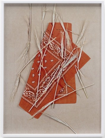 Annette Kelm, Paisley and Wheat, Orange # 1, 2013, Giò Marconi