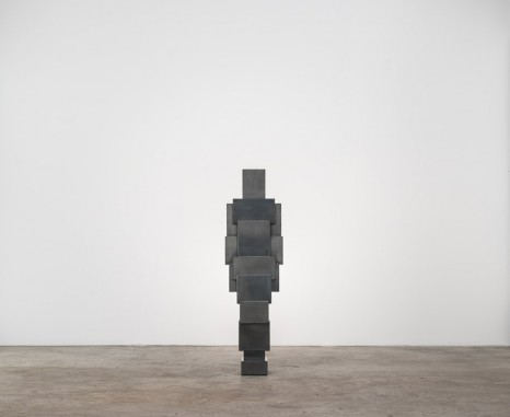 Antony Gormley, Expansion Field 14/60, 2014, Galerie Thaddaeus Ropac