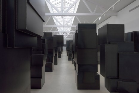 Antony Gormley, Expansion Field, 2014, Galerie Thaddaeus Ropac