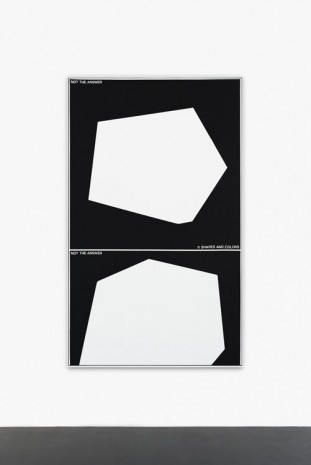 Guillaume Gelot, NOT SHAPES AND COLORS, 2014, Peres Projects