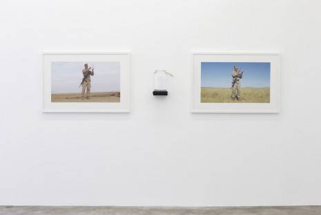 Mel Ziegler, Catch and Release, 2008 - 2010, Perrotin