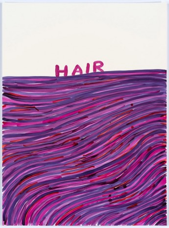 David Shrigley, Untitled (Hair), 2015, Anton Kern Gallery