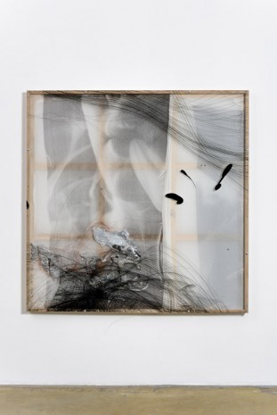 David Douard, WE (breath), 2015, Galerie Chantal Crousel