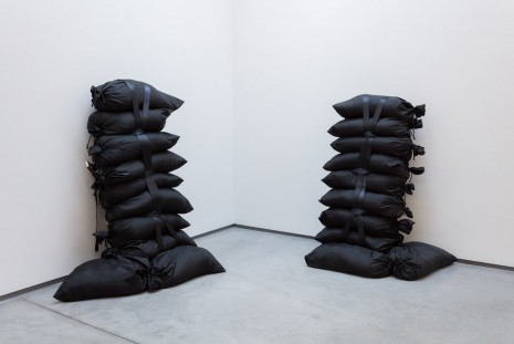 Gardar Eide Einarsson, Utah to Resume Use of Firing Squads for Executions, 2015, team (gallery, inc.)