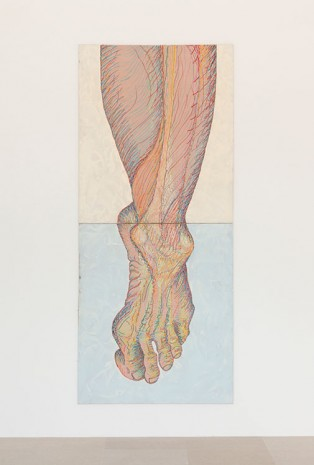 Paul Sharits, Left Foot, 1982, Greene Naftali