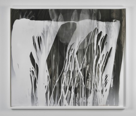 Analia Saban, Photogram With Hand, 2011, Praz-Delavallade
