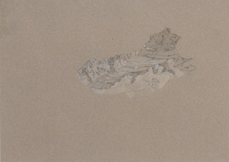Irene Kopelman, View from Grosser Aletschgletscher, 2013, LABOR