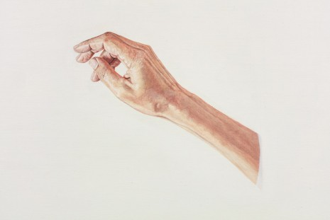 Toba Khedoori, Untitled (hand I) (detail), 2013-14, Regen Projects