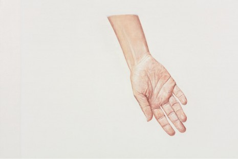 Toba Khedoori, Untitled (hand II) (detail), 2013-14, Regen Projects