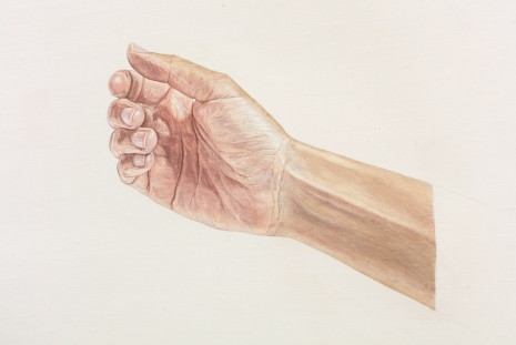 Toba Khedoori, Untitled (hand III) (detail), 2013-14, Regen Projects