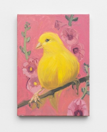 Ann Craven, Yello Fello (Small on Pink), 2002, Maccarone