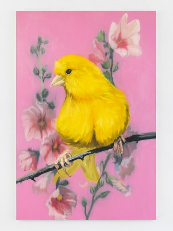 Ann Craven, YELLO FELLO 2, 2004, Maccarone