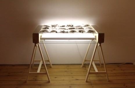 Matheus Rocha Pitta, Apprehension Table #5, 2008, Massimo De Carlo