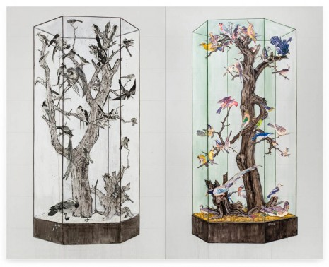 Ni Youyu, Specimen cabinet of imperial art academy, 2012 - 2014, Contemporary Fine Arts - CFA