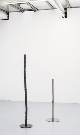 David Renggli, Group of poles, 2016, Valentin