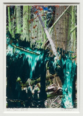 Gerhard Richter, 20. Jan. 2015, 2015, Marian Goodman Gallery