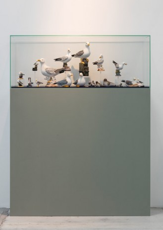 Guillaume Bijl, Sorry, 2015, Galleri Nicolai Wallner