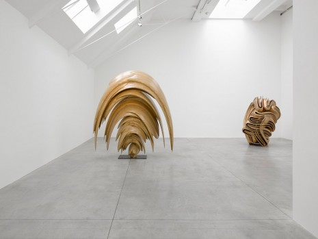 Tony Cragg Lisson Gallery