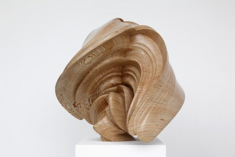 Tony Cragg, Willow, 2014, Lisson Gallery