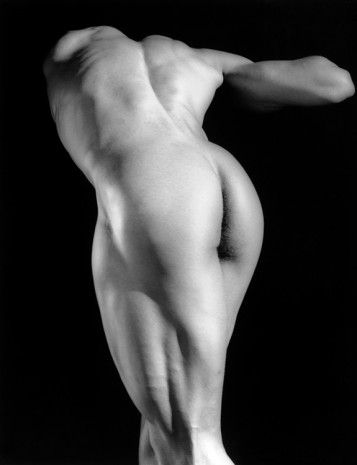Robert Mapplethorpe, Michael Reed, 1987, Alison Jacques Gallery
