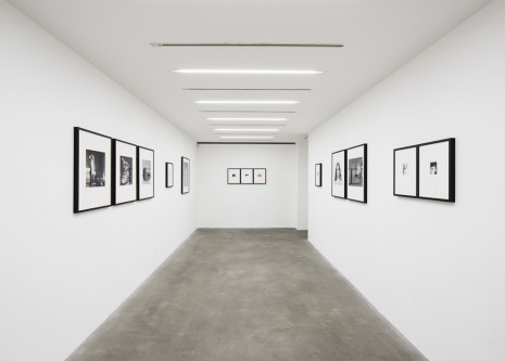 Robert Mapplethorpe Alison Jacques Gallery
