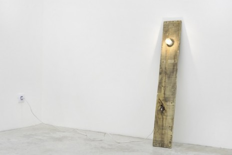 Virginia Overton, Untitled (pallet), 2011, Praz-Delavallade