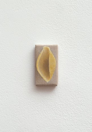 Helene Appel, Shell Pasta, 2017, The Approach