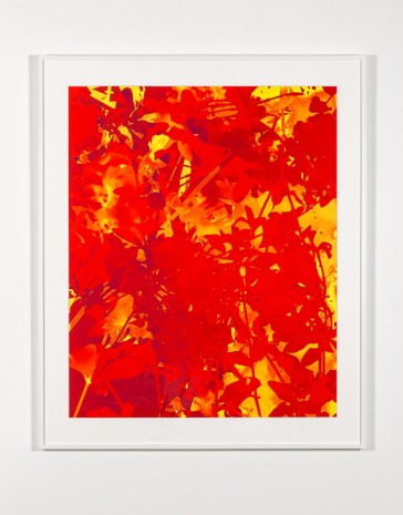 James Welling, #9, 2016, Marian Goodman Gallery