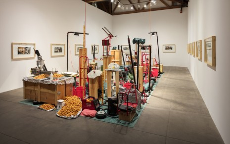 Jason Rhoades Hauser & Wirth My Brother / Brancuzi