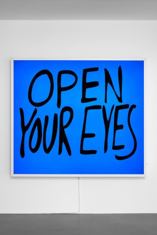 Sam Durant, Open Your Eyes, 2017, Sadie Coles HQ
