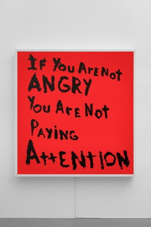 Sam Durant, If You Are Not Angry You Are Not Paying Attention, 2017, Sadie Coles HQ