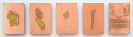 Walead Beshty, Body Print (Popliteal Fossa, Left Antebrachium, Right Antebrachium, Right Carpal and Attending Soft Tissues, Fluticasone Prop 50 mcg Spray), 2017, Petzel Gallery