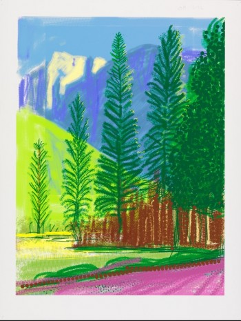 David Hockney, The Yosemite Suite No.12, 2010, Galerie Lelong & Co.