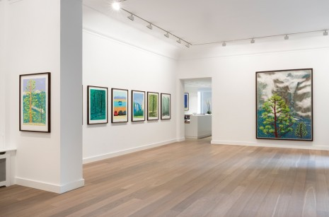 David Hockney Galerie Lelong & Co.