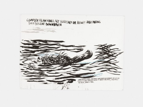 Raymond Pettibon, No Title (Complex branchings are…), 2017 , David Zwirner