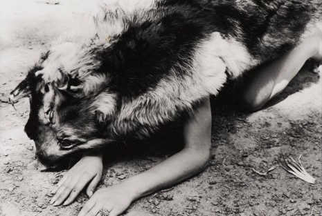 Ana Mendieta, Dog, 1974 , Alison Jacques Gallery