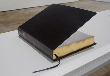 David Hammons, The Holy Bible: Old Testament, 2002, Sean Kelly