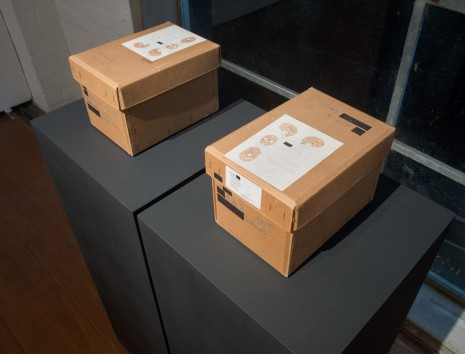 Daniel Boyd, Decommissioned skull boxes, Natural History Museum, London, , Roslyn Oxley9 Gallery