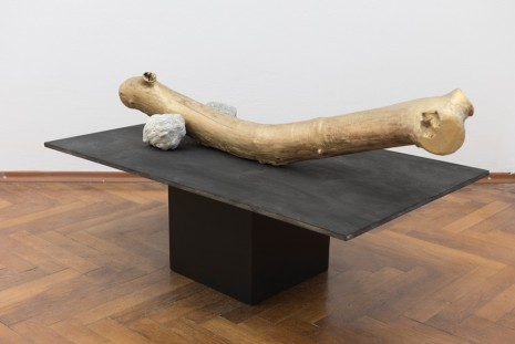 Jana Želibská, Golden Wood, 2017 , Gandy gallery