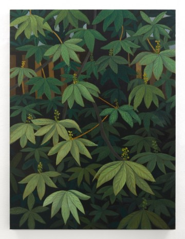Stephen McKenna, Horse Chestnut Leaves, 2012, Kerlin Gallery