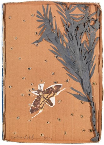 Colin Self, Deathshead Hawk Moth breathing from Starry Sky, c.1990s, The Mayor Gallery