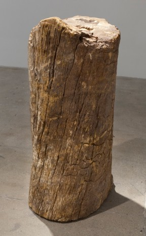 Giuseppe Penone, Essere vento (To Be Wind), 2014