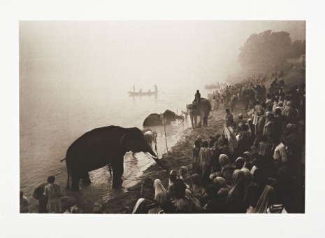 Don McCullin, The Great Elephant Festival at the River Gandak, near Patna, India, 1987 Printed in 2015, Hauser & Wirth