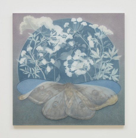 Theodora Allen, The Moth, No.3, 2017 , Almine Rech Gallery