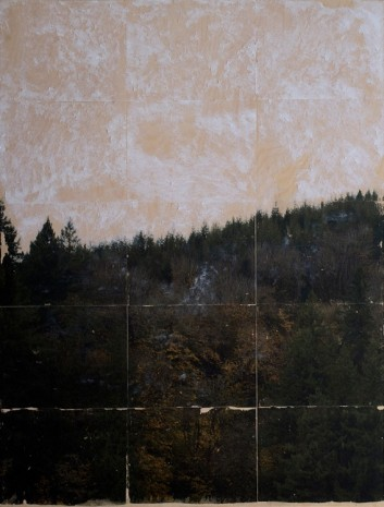 Cole Sternberg, a wooded sky being erased, 2017 , Praz-Delavallade