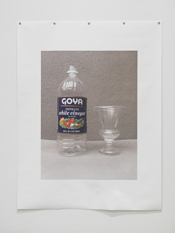 B. Wurtz, Untitled (Vinegar), 2018 , Metro Pictures