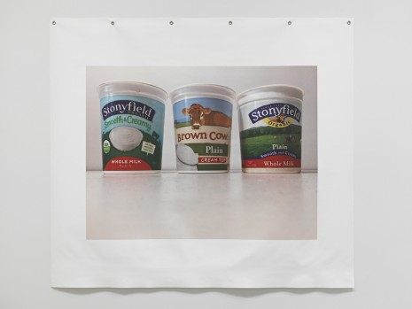 B. Wurtz, Untitled (Yogurts), 2018 , Metro Pictures