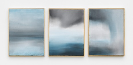Thiago Rocha Pitta, sublimation, condensation, and precipitation, 2018 , Marianne Boesky Gallery