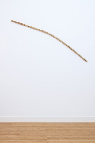 Mauricio Limón de León, A set of nonverbal fantasies (Stick), 2018, Ellen de Bruijne PROJECTS